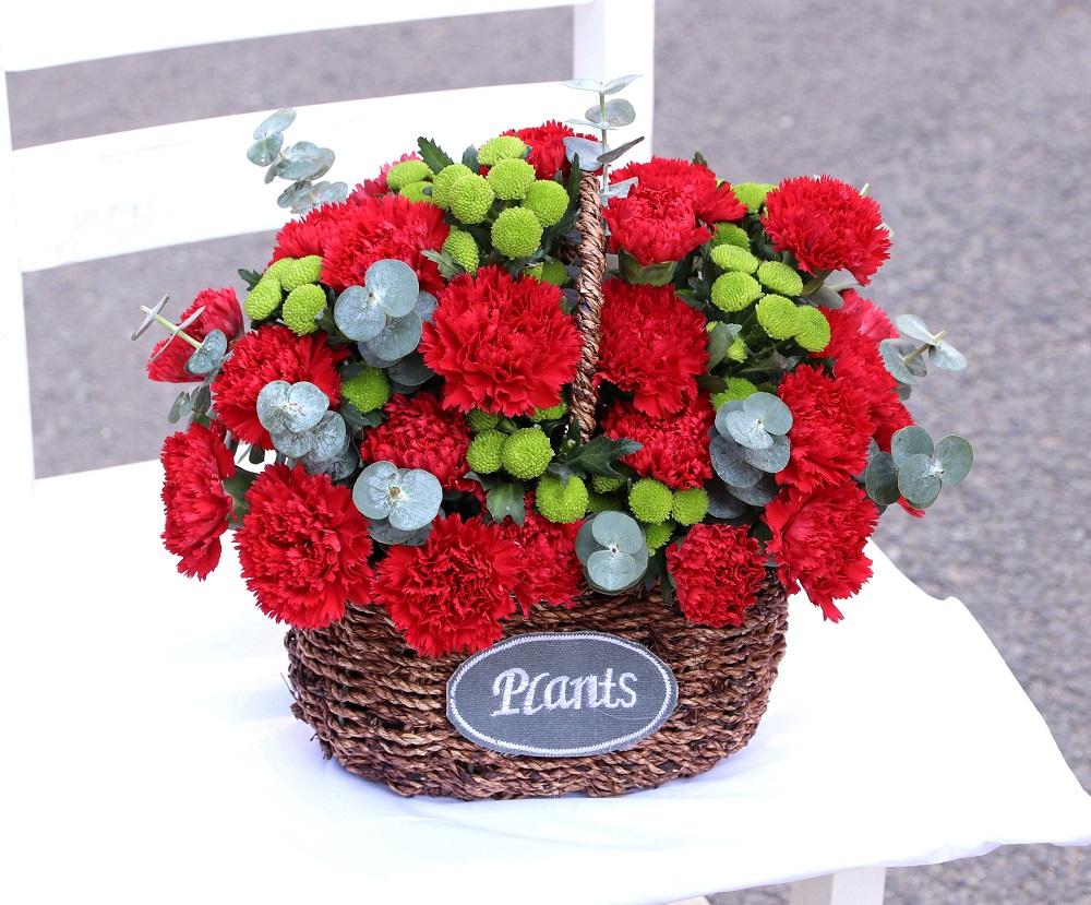 送什么花給媽媽 適合送給母親的花