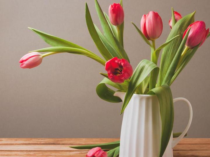適合母親節送的花    母親節花束有哪些推薦