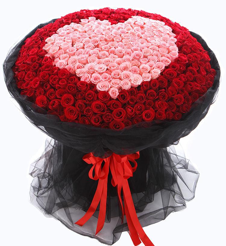 520朵玫瑰精品大花束