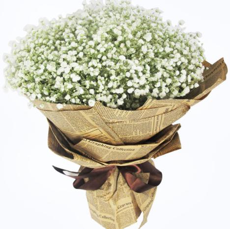 圣誕節男友該選什么花送 適合送女友的花