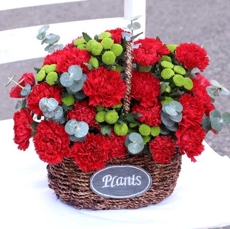 男孩給女孩送花,女孩怎么說表達感謝