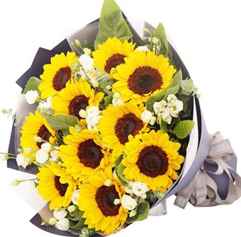 交車送花送什么 適合送購車者的花