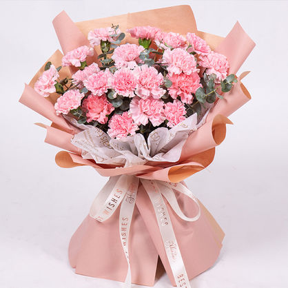 19枝粉色康乃馨花束