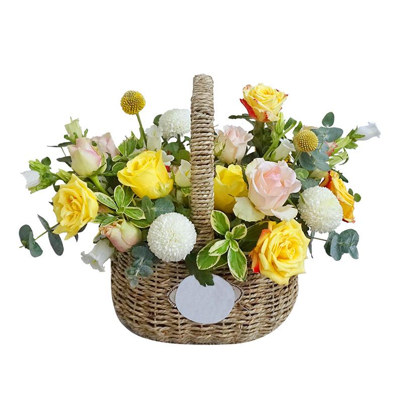 6枝粉玫瑰+5枝紅黃邊玫瑰+3枝黃玫瑰+乒乓菊精美手提花籃