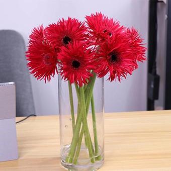 過生日給女兒送什么花 送女兒的花有哪些