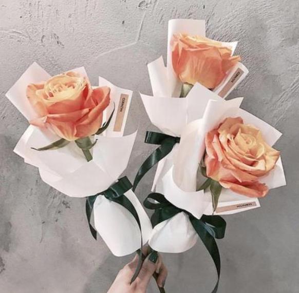 過節送花竅門,所有節日該送哪些花?