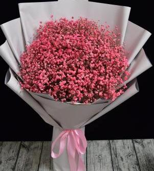 鲜花花语,南昌网上送花要了解这些知识