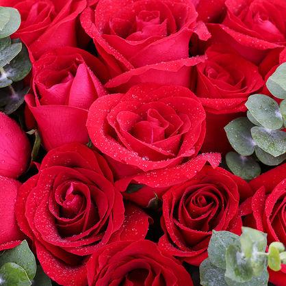 韓式包裝 33朵紅玫瑰花束