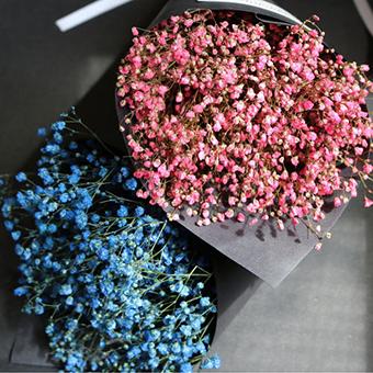 七夕男友一般送什么花 送女友的花有哪些