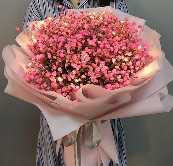 花語是成長的花   哪種花的花語是成長