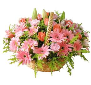 鮮花的花語和代表意義有哪些 各種鮮花的花語和寓意有什么