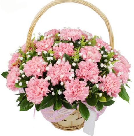 送花被拒絕還有戲嗎,送花被拒怎么辦