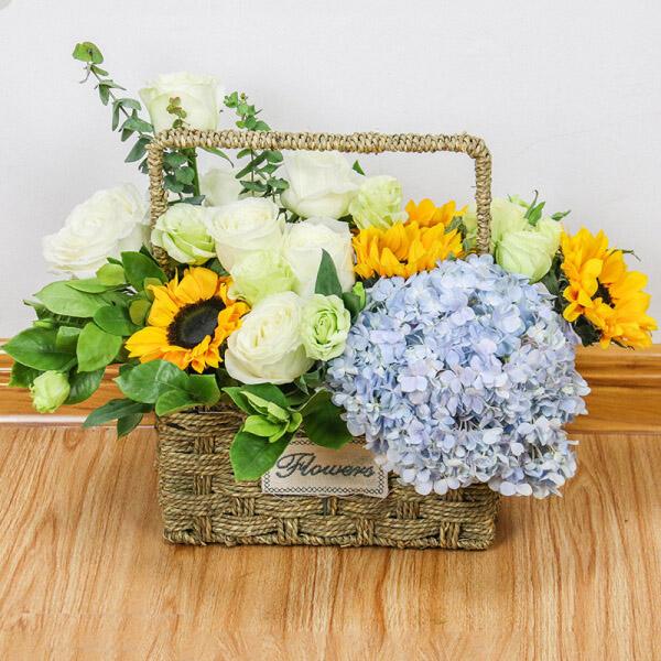 1枝蓝绣球+3枝绿桔梗+7枝白玫瑰+4枝向日葵 精美花篮