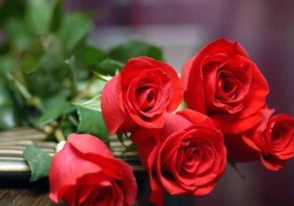 9支向日葵代表什么意思   9枝太陽花的花語