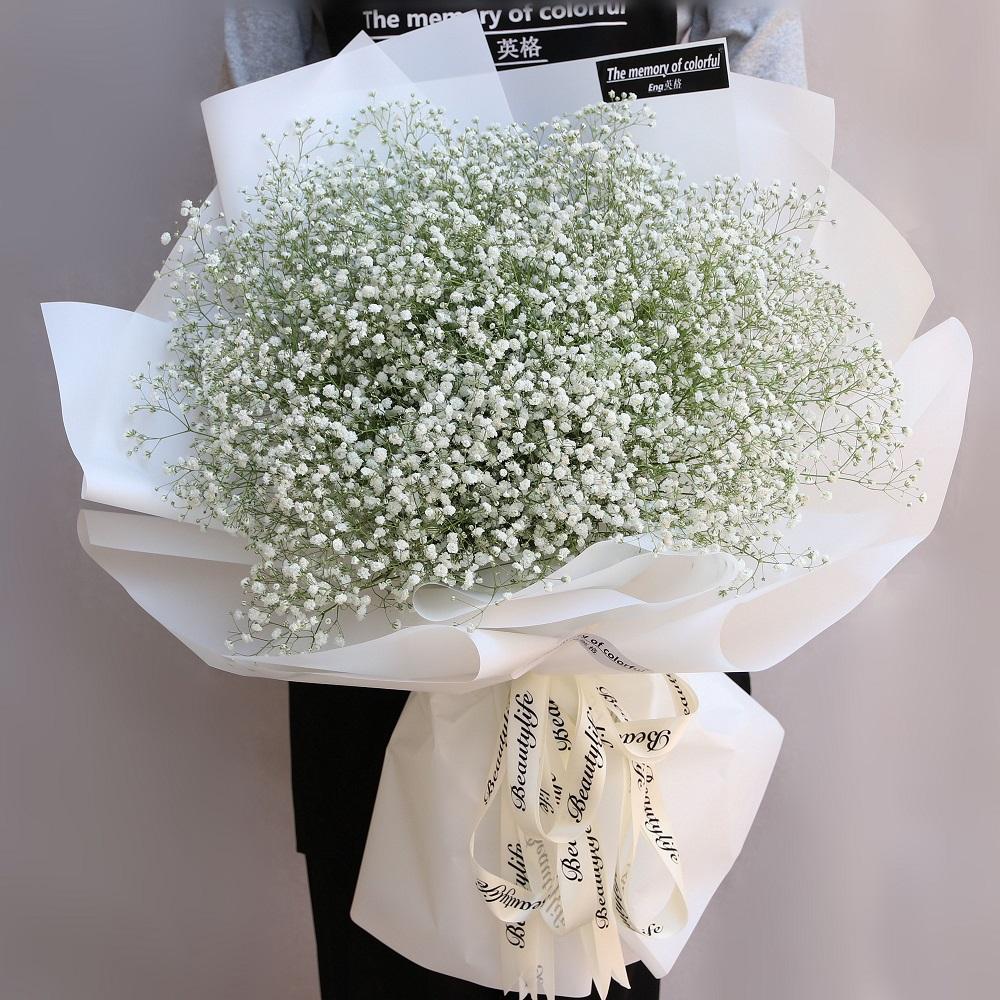 表示友情的花有什么 表示友誼的花有哪些