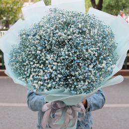 女人一般送男人什么生日鮮花 送男人鮮花的花語含義