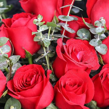 11枝紅玫瑰+尤加利葉