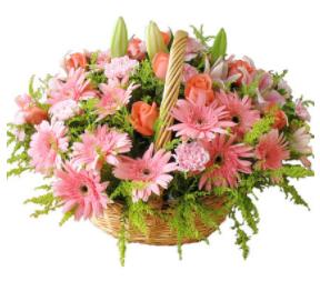感恩節送花給父母,有這些就對了