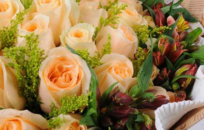 送長輩什么顏色的花   祭奠鮮花的注意事項