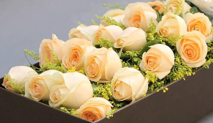送異性朋友送什么鮮花   表達祝福應該送什么花