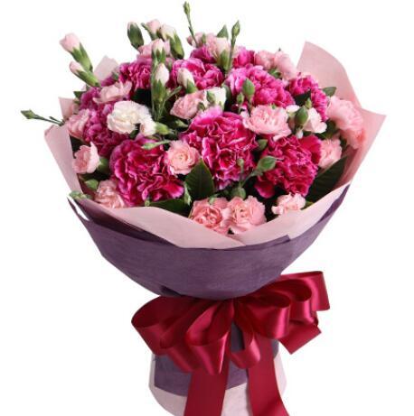 女性朋友交往送花推薦,什么花適合送給女性朋友